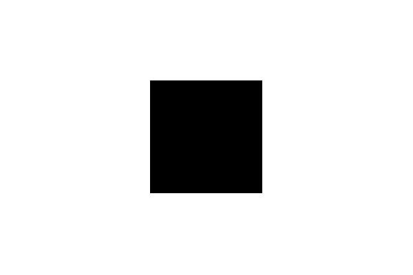 logo-swarovski